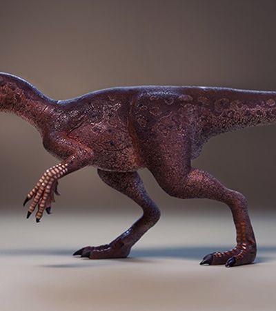 Fóssil de ancestral de tiranossauro é encontrado em cidade do interior do Rio Grande do Sul