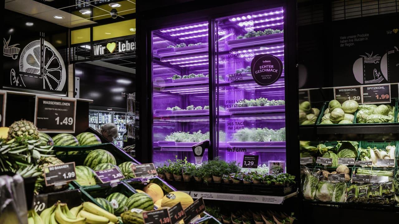 horta modular supermercado 1