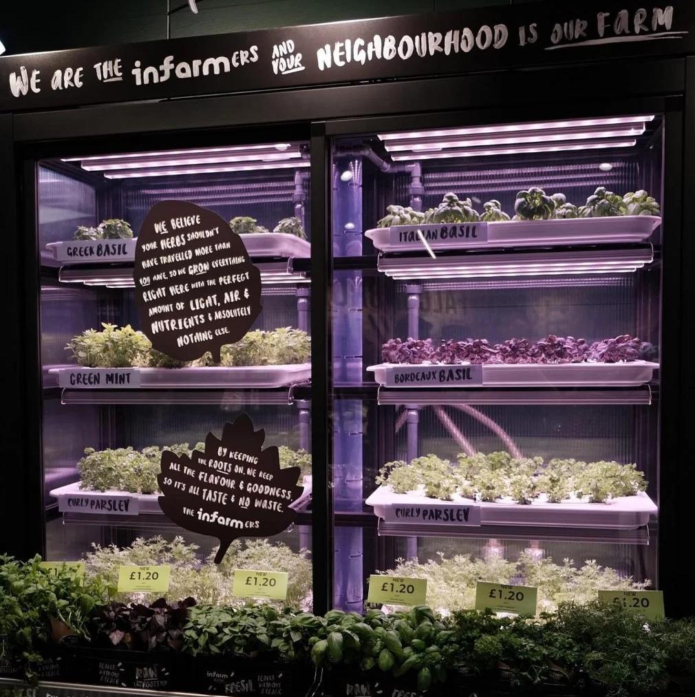 horta modular supermercado 4