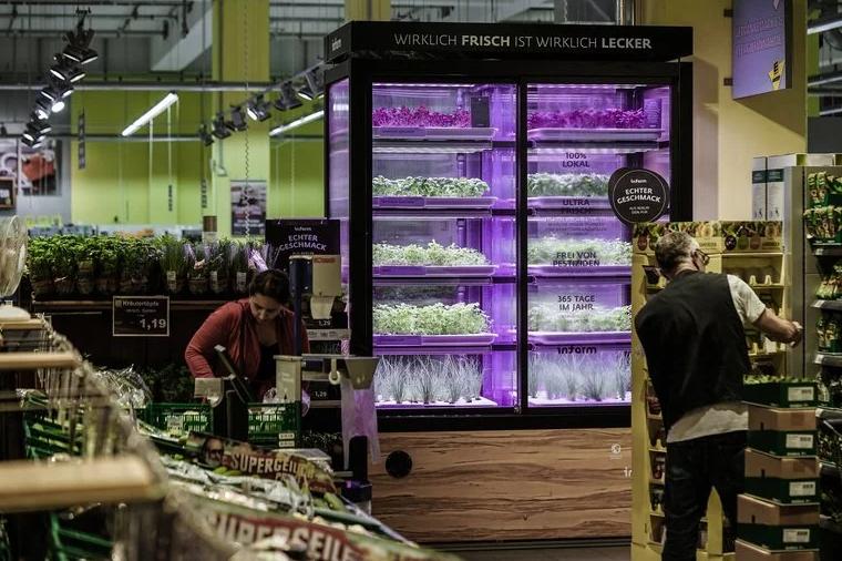 horta modular supermercado 5