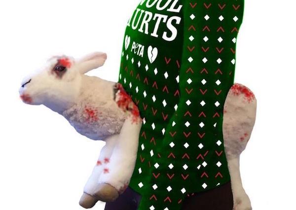 suéter ovelhas mutiladas peta 1