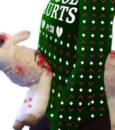 PETA lança suéter com ovelhas mutiladas em campanha contra a tosa