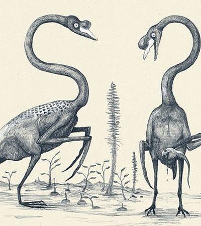 Se imaginássemos animais de hoje com base em ossos como fizemos com dinossauros