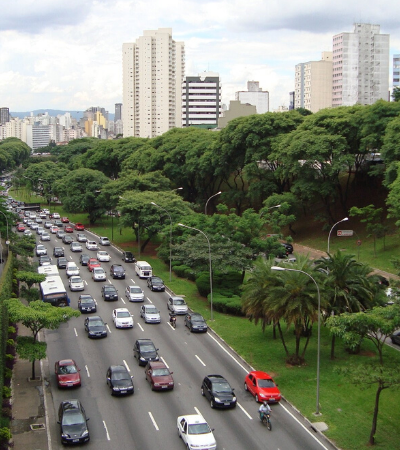 Entenda a função do bosque de conservação urbana recém inaugurado na 23 de maio