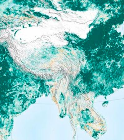 Nasa: Terra está 'mais verde' do que há 20 anos. Mas não há o que celebrar