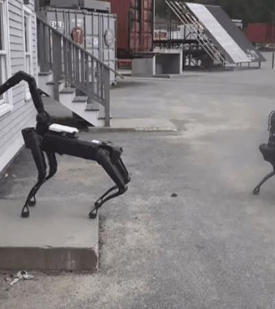 Saiba como 'cão robô' é usado pela polícia dos Estados Unidos