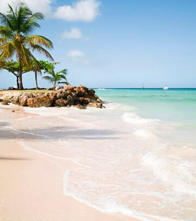 Tobago: florestas exuberantes e praias paradisíacas são alguns dos bons motivos para visitar a ilha