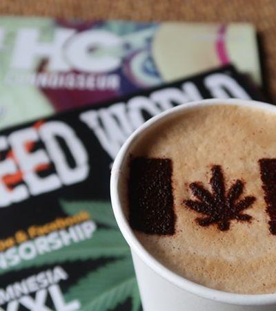 Saiba porque cannabis e café serão enviados ao espaço