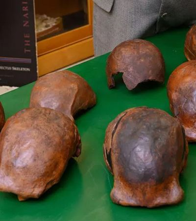 Fósseis mostram que Homo erectus teve sua última morada na Indonésia, há cerca de 100 mil anos