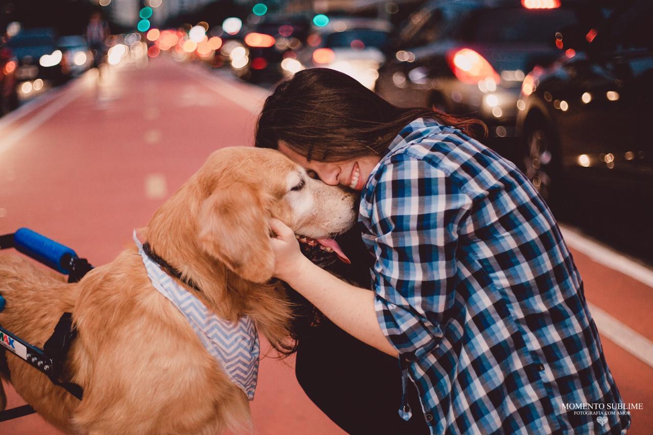Troy cão especial 2