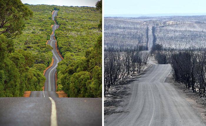 Imagens antes e depois dos incêndios na Austrália