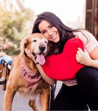 Conheça a história do Troy, o Golden Retriever que mudou a vida dos donos de pets com necessidades especiais