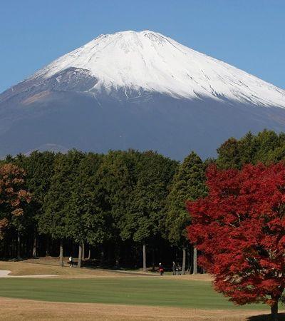 Empresa dá 50 mil passagens de graça para o Japão