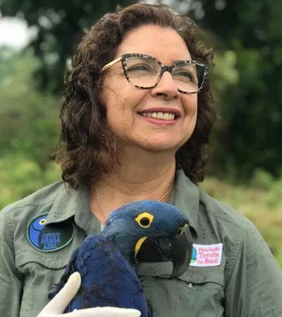Bióloga que em 30 anos livrou Arara Azul da extinção concorre a prêmio