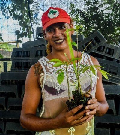 MST lança em Brumadinho plano para plantar 100 milhões de árvores em resposta a crimes ambientais