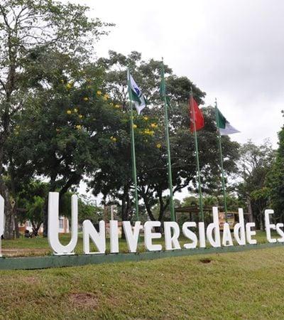 Alunos da Universidade de Londrina criam membrana que recupera pele e ossos