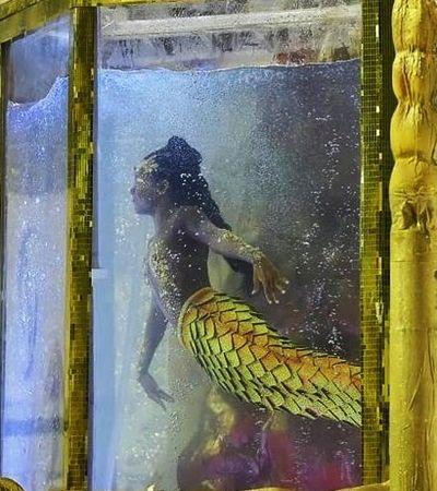 A história da atleta do nado que brilhou como Oxum no desfile da Viradouro