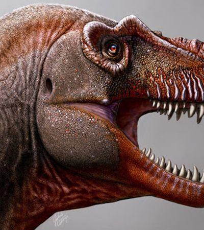 A história do fazendeiro que descobriu uma das espécies mais antigas de Tiranossauro
