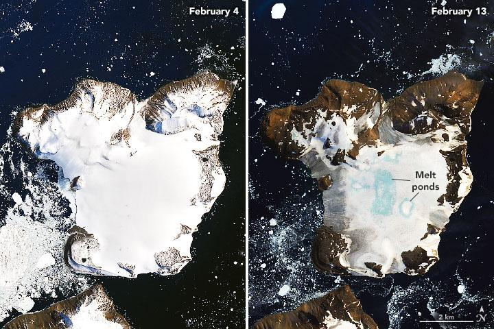 Fotos lado a lado da Antártica nos dias 4 e 13 de fevereiro. a Primeira mostra uma ilha com a superfície coberta de neve. Na segunda, vê-se que grande parte da neve derreteu e há pequenas lagoas de água do derretimento.