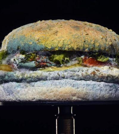 Burger King lança vídeo de lanche se decompondo e anuncia banimento de conservantes