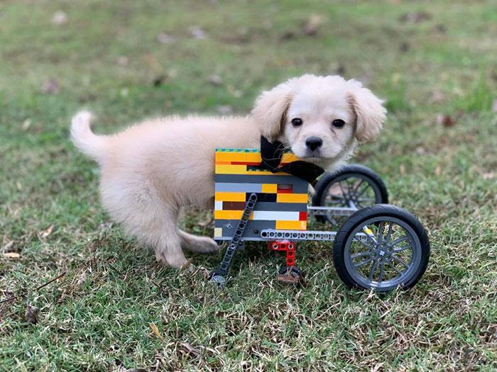 cadeira de rodas lego 2
