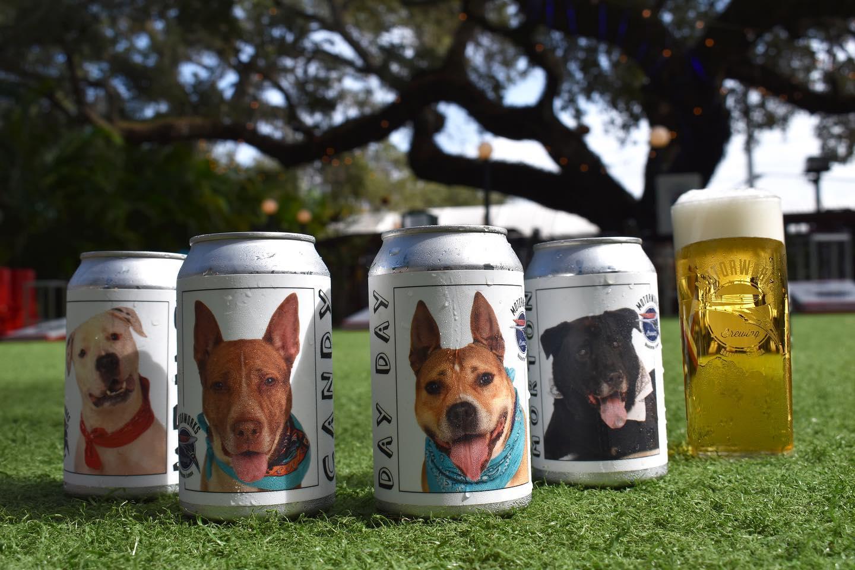 cerveja-fotos-cachorro-2