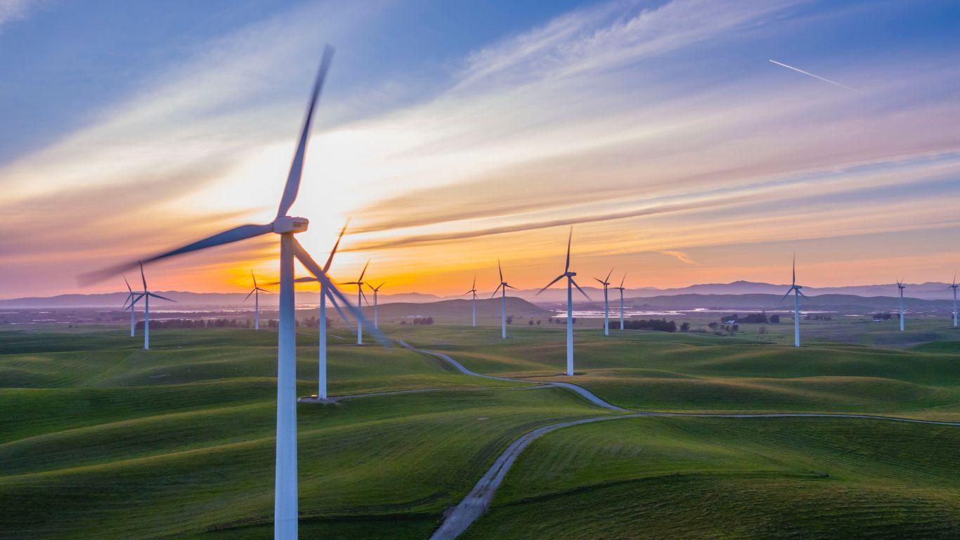 emissões de carbono 7