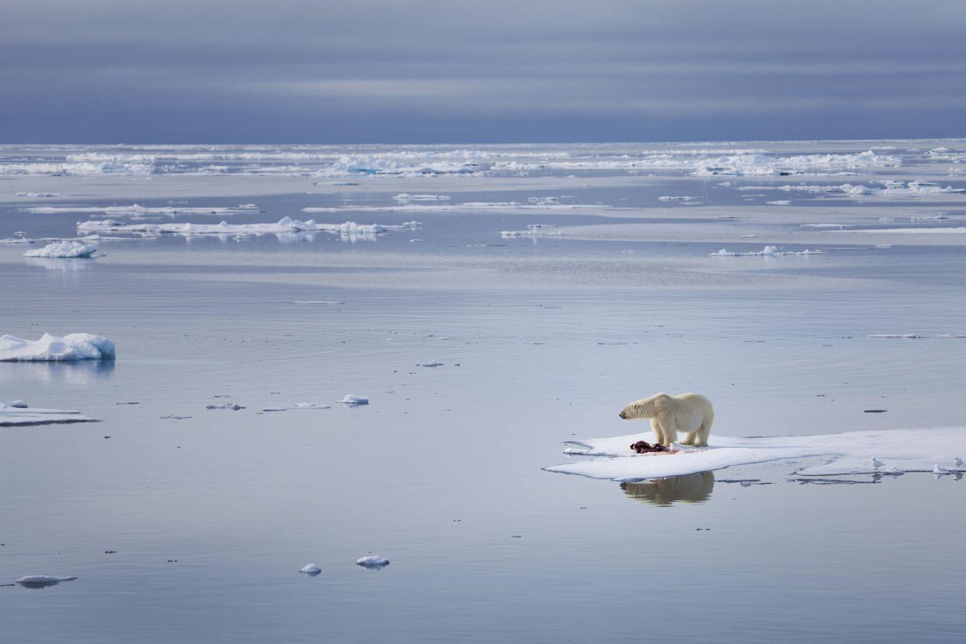 impacto econômico mudanças climáticas 3