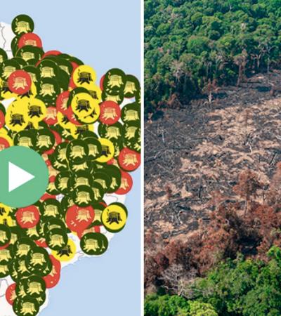 De olho nos ruralistas: quem são os proprietários de terra que mais desmatam no Brasil
