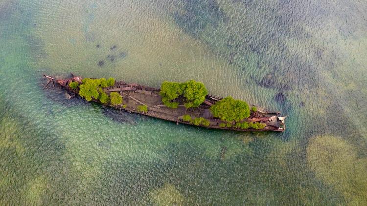 navio confiscado natureza 2