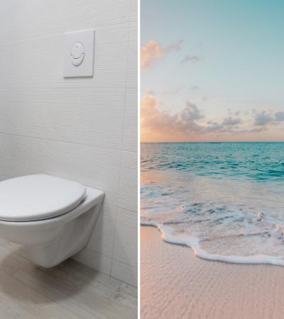 Sanitários de água salgada podem poupar 30% da água mundial graças a bactéria do mar vermelho