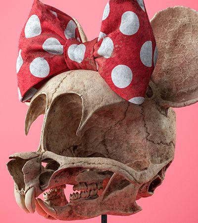 Desenhos clássicos são recriados em forma de esqueleto e resultado impressiona