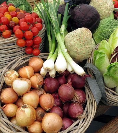 Feira vegana online é o que você precisava para mudar hábitos e ajudar o próximo
