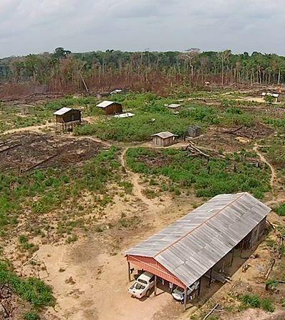 Como acusado por chacina na Amazônia vende gado para maior frigorífico do mundo