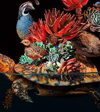Desenhos hiper-realistas conectam animais terrestres com vida marinha