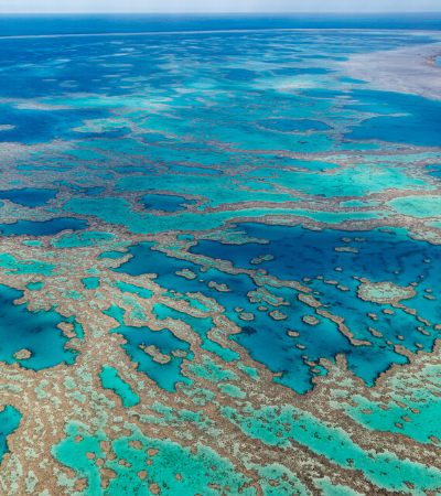Grande Barreira de Corais enfrenta maior branqueamento da história