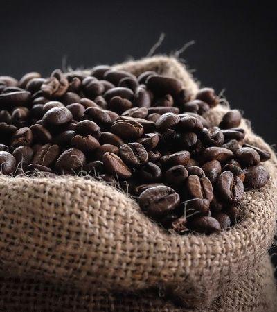Ciência desvenda os mistérios por trás do amor incondicional pelo café