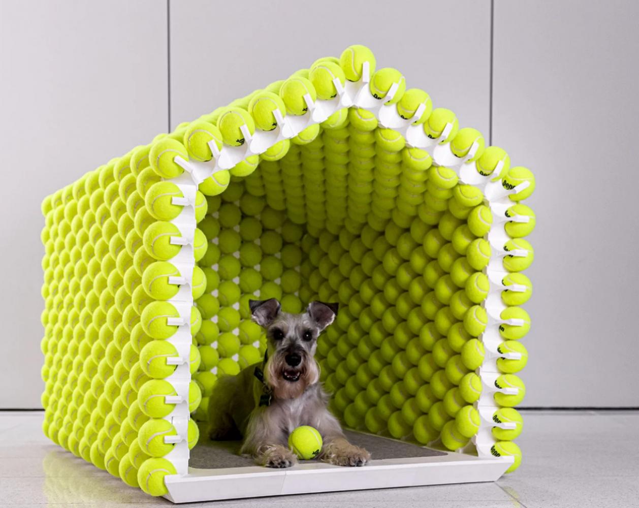 casa de cachorro bola de tênis 1