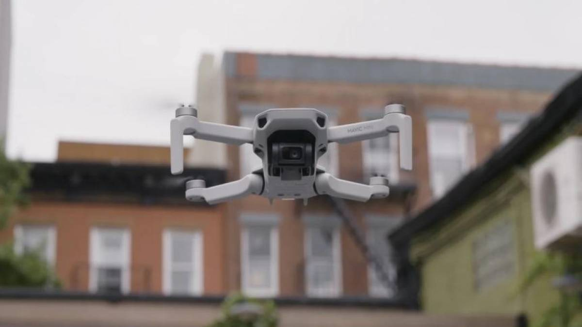 drone passear cachorro 2
