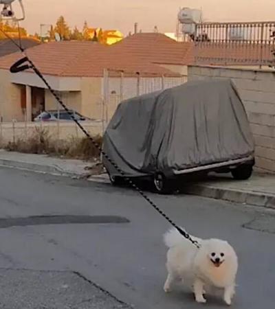 Homem usa drone para passear seu cachorro durante a quarentena