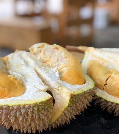 Fruta mais fedorenta do mundo é capaz de carregar smartphones, afirma pesquisa