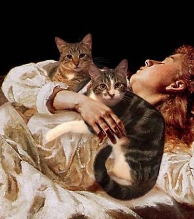 Ela recriou pinturas famosas inserindo seus gatos e o resultado é pura fofura