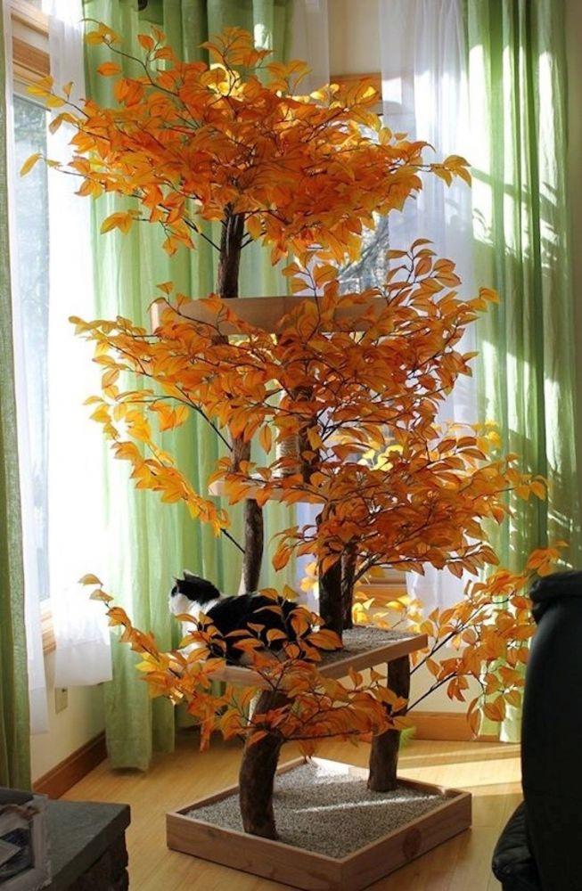 torres de gato árvores 1