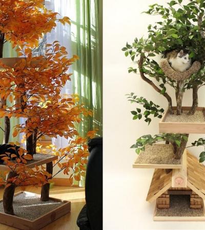 Tiveram a ideia genial de construir torres de gato com árvores reais