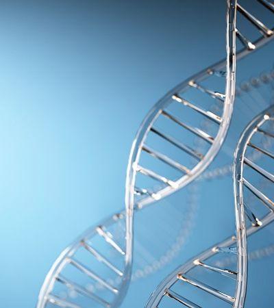 Cientistas revelam mutações genéticas que diminuem o tempo de vida