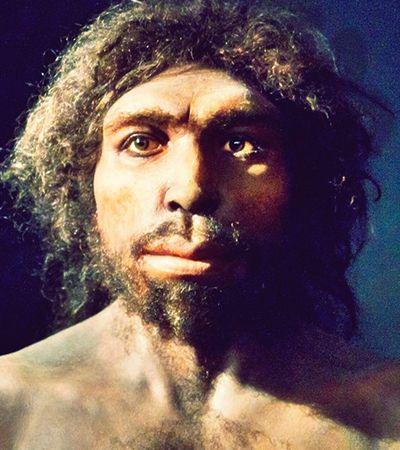 Resposta para conexão entre humanos e neandertais está em fóssil de 800 mil anos