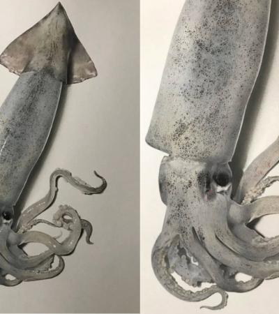 Ilustrador cria desenho 3D de lula que vai bugar sua mente