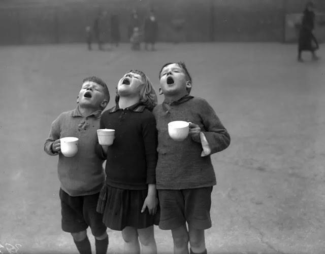 Três crianças com as bocas abertas gargarejando enquanto seguram uma xícara