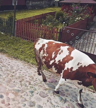 Ela usou o Google Street View para explorar a Polônia em tempos de coronavírus