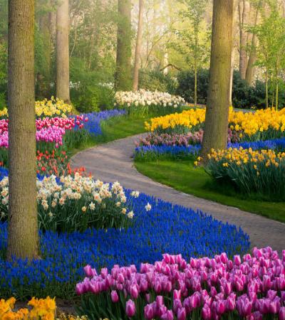 Um dos jardins mais famosos do mundo totalmente vazio pela 1ª vez em 71 anos